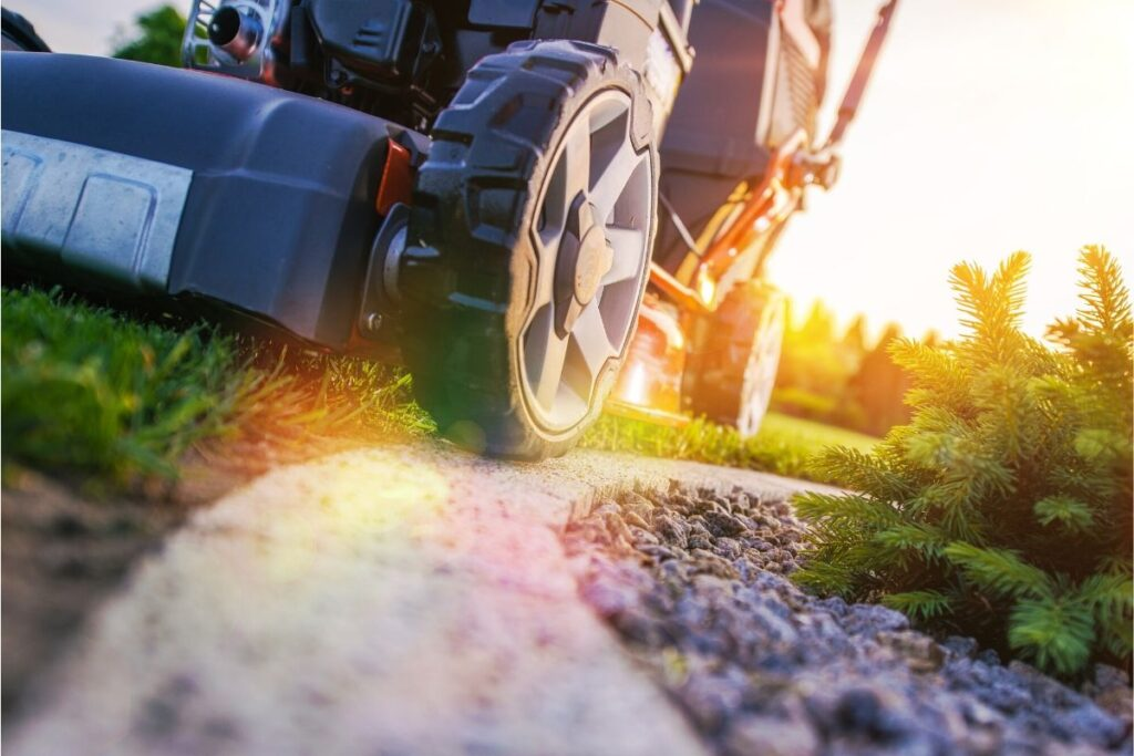 lawn care grass mowing